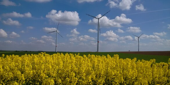 Windpark Kindenheim